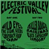 Electric Valley Festival 2015 (foto: Electric Valley Records)